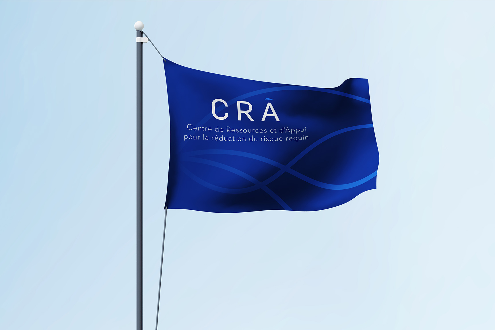 cra-3